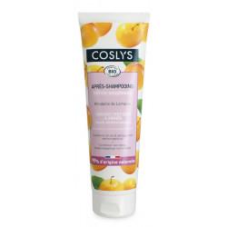 Après shampooing cheveux secs et abimés 250 ml Les Copines Bio Hygiène bio