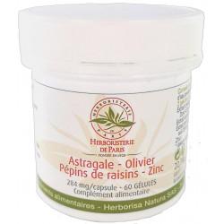 Herboristerie de Paris Astragale Olivier Pépins de raisins Zinc 60 gélules astragalus menbranaceus Les copines bio