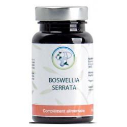 Planticinal Boswellia serrata 90 gélules acide boswellique antioxydant Les copines bio