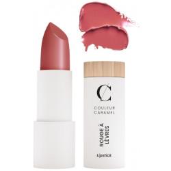Couleur Caramel Rouge à lèvres satiné No 234 bois de rose 3.5gr glossy sublime Les copines bio