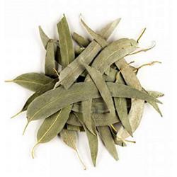 Herboristerie de Paris Eucalyptus feuilles longues entières bio 100g tisane respiratoire les copines bio