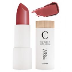 Couleur Caramel Rouge à lèvres satiné No 507 -  Terracotta 3,5 g produit de maquillage minéral Les Copines Bio