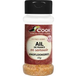 Cook Ail en semoule 50gr Condiment alimentaire Les Copines Bio