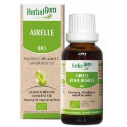 Herbalgem Gemmobase Airelle bio Flacon compte gouttes 50ml Complément alimentaire Santé Les Copines Bio