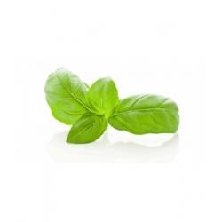 Herboristerie De Paris Basilic feuille Bio 100gr produit de préparation vrac pour tisane Les Copines Bio