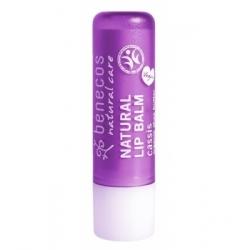 Benecos Baume à lèvres Cassis 4gr produit de soin pour les lèvres Les Copines Bio