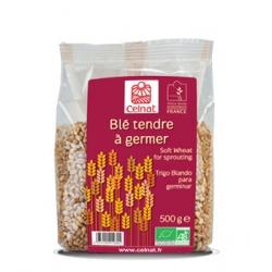 Celnat Blé Tendre à germer 500gr produit d'Epicerie Les Copines Bio