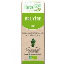 Herbalgem Bruyère Bio Flacon compte gouttes 50ml complément alimentaire Les Copines Bio