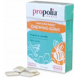 Propolia Chewing Gum Propolis et Cannelle  27 gommes produit d'alimentation Les Copines Bio