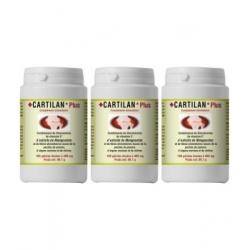 Han-Biotech Lot de 3 Cartilan Plus 3X180 gélules Complément alimentaire Les Copines Bio