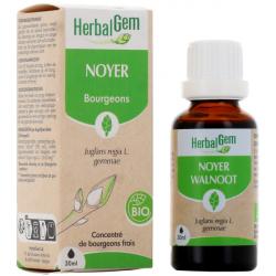 Herbalgem Noyer bio Flacon compte gouttes 50ml complément alimentaire bien-être Les Copines Bio