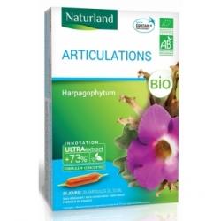 Naturland Harpagophytum Bio 20 ampoules de 10ml 200.0ml complément alimentaire Les Copines Bio