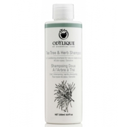 Odylique Shampoing Doux à l'Arbre à Thé 200ml  produit de Soin et d'Hygiène capillaires Les Copines Bio