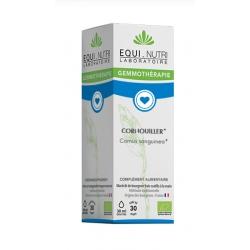 Equi - Nutri Cornouiller bio Flacon compte gouttes 30ml  complément alimentaire Les Copines Bio