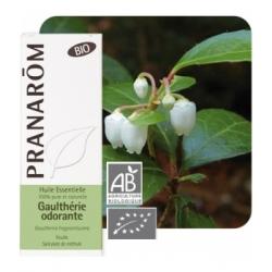Pranarôm Gaulthérie odorante Bio Flacon compte gouttes 10ml produit d'aromathérapie Les Copines Bio