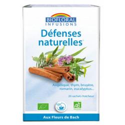 Biofloral Infusion Défenses naturelles 20 sachets 24g thym bourgeons de pin les copines bio