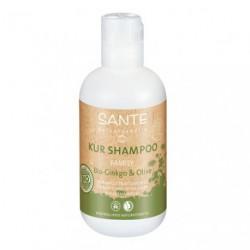 Santé Shampooing Family Soin Ginkgo et Olive 200ml cosmétique bio